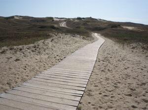 Der Weg zur Freiheit