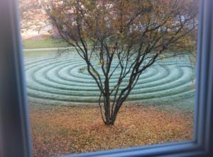 Kurse im Herbst: Loslassen & Gelassen werden